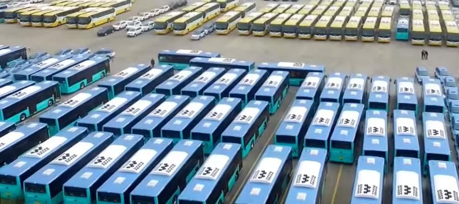 BYDbuses