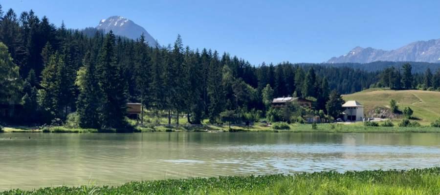 Sjön heter Wildsee. Det var varmt i vattnet, men väldigt dyig botten.