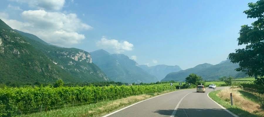 Norra Italien bjuder på vackert landskap med vinodlingar vart du än kommer