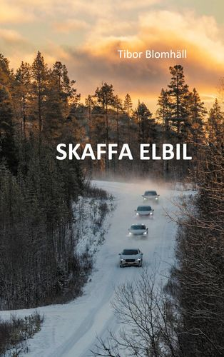 Skaffa_elbil